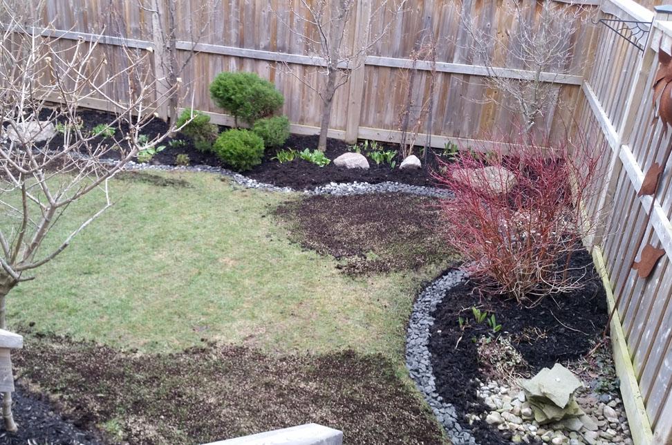 garden renovation and lawn repair